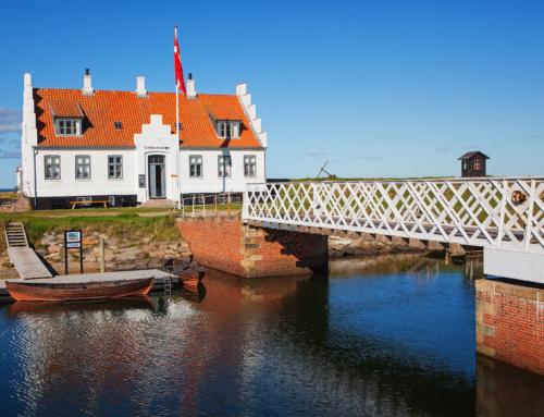 2 θέσεις EVS στη Δανία // Υποστήριξη ατόμων με νοητική αναπηρία!