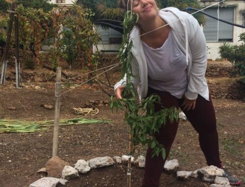 Φυτεύοντας αγάπη… στη Μάλαγα! Η Ραφαέλα μας αφηγείται…