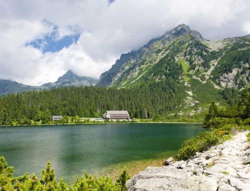 NEO TC! Φύση και συναισθηματική νοημοσύνη! Σλοβακία 11 – 21/7/2019