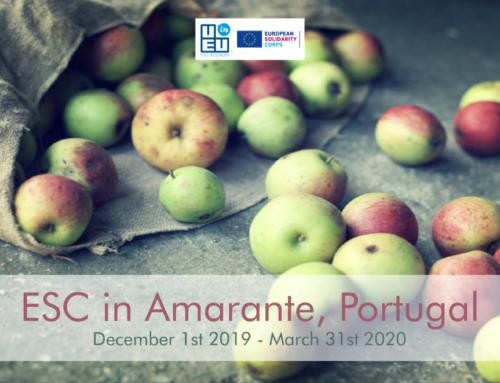 ΝΕΟ πρόγραμμα Εθελοντισμού για 4 μήνες στην Πορτογαλία// Προώθηση fair trade & αειφορίας!