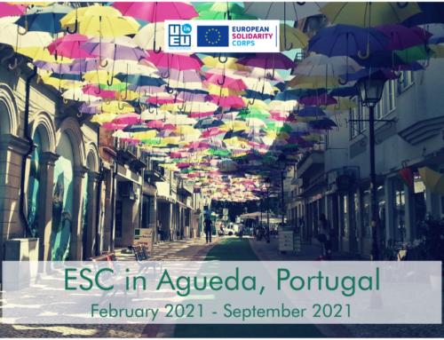 Νέο πρόγραμμα εθελοντισμού στην Πορτογαλία για 8 μήνες!