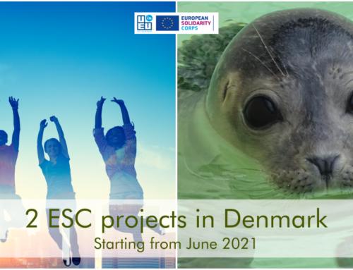 2 θέσεις εθελοντισμού στη Δανία! Σε Κέντρο Θαλάσσιων Ερευνών και σε σχολείο!! Αιτήσεις μέχρι 9 Μαίου!
