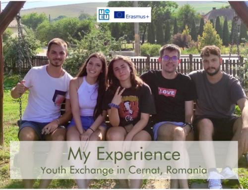 Πήγαμε στη Ρουμανία to grow our skills! Διαβάστε την ιστορία μας !
